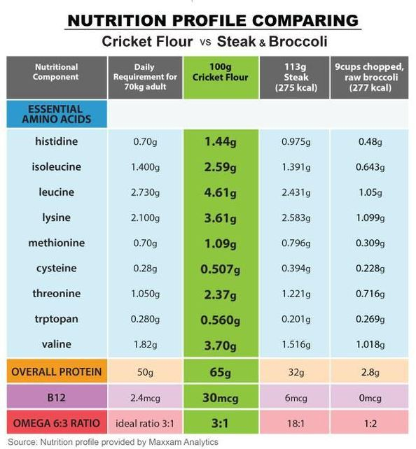 Nutrition Profile Cricket Flour
