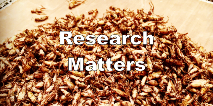 Researching Insects for Malnutrition: Where Will Entomophagy Have the Biggest Impact?