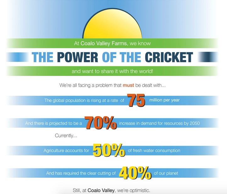 The Power of the Cricket